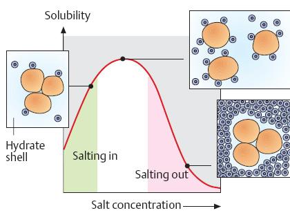 presipitasi protein dengan amonium sulfat